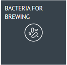 Picture for category Bacteria