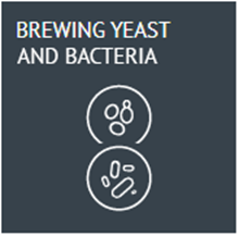 Picture for category Brewing Yeasts and Bacteria