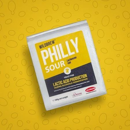 WildBrew-Philly-Sour-LowRes-square